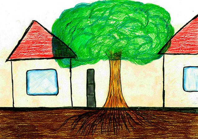 隣人トラブル・木の枝と根っこ