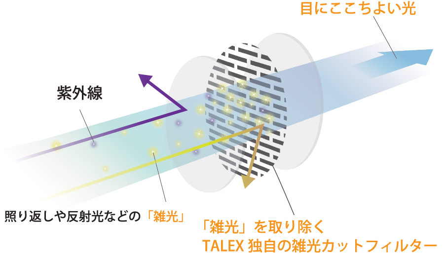 TALEXの紫外線と雑光をカットする仕組み