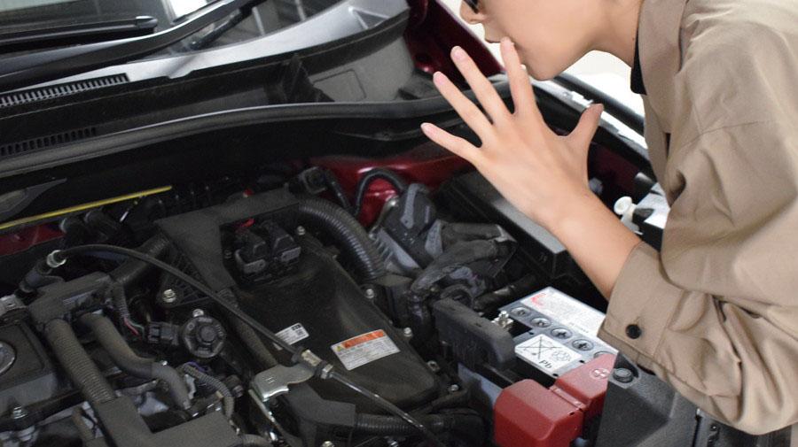 エンジンをかける前に猫バンバンを忘れずに。