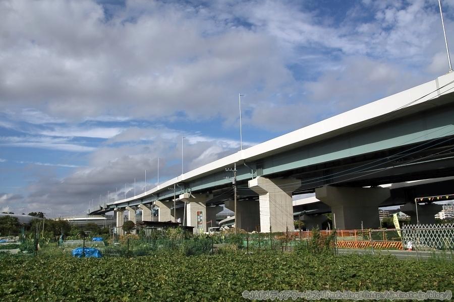画像3。横浜青葉IC・JCTからトンネル出入口のある北八朔地区へ向かう途中で撮影。