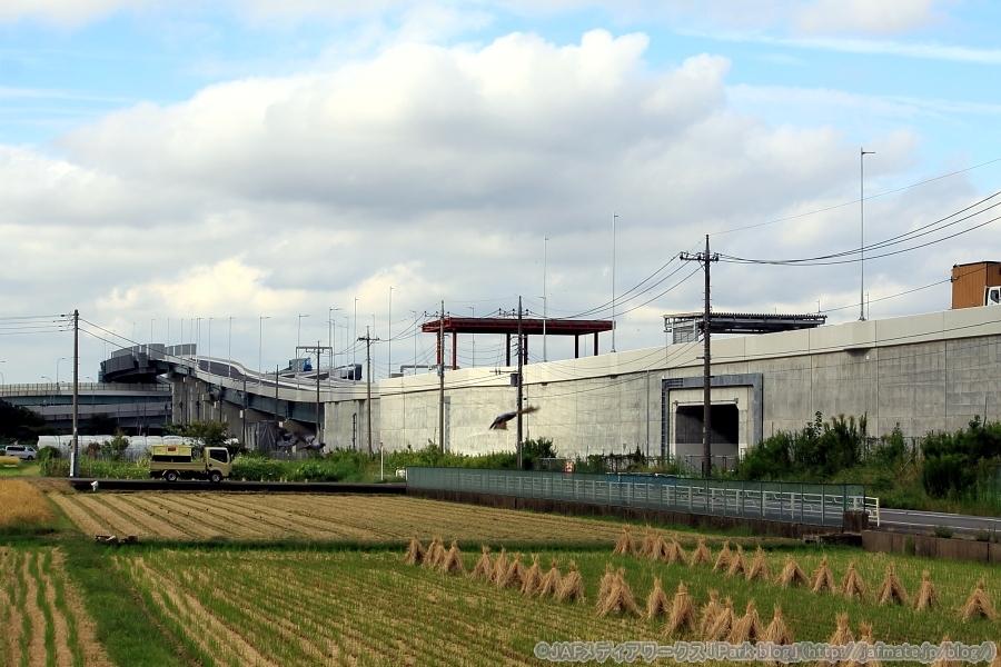 画像4。橋桁区間が終わって、壁面があるのは盛土の区間。