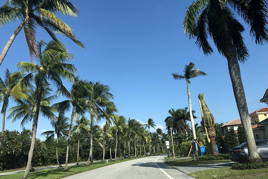 マイアミ近郊のクルマから見た風景