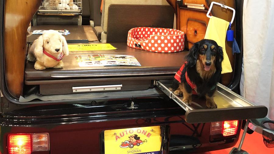 愛犬くん:ペット専用の足洗い場は、中型犬サイズ(約10kg)までの利用が可能だ。