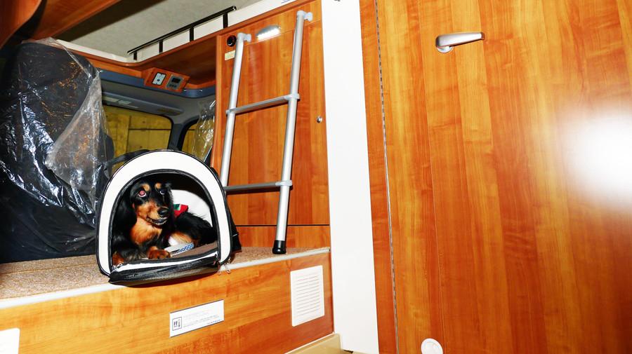 コルドランディ:助手席の後方にあるのは、カーペット敷のピット。ケージを置いたり、ベンチとしても使用可能だ。