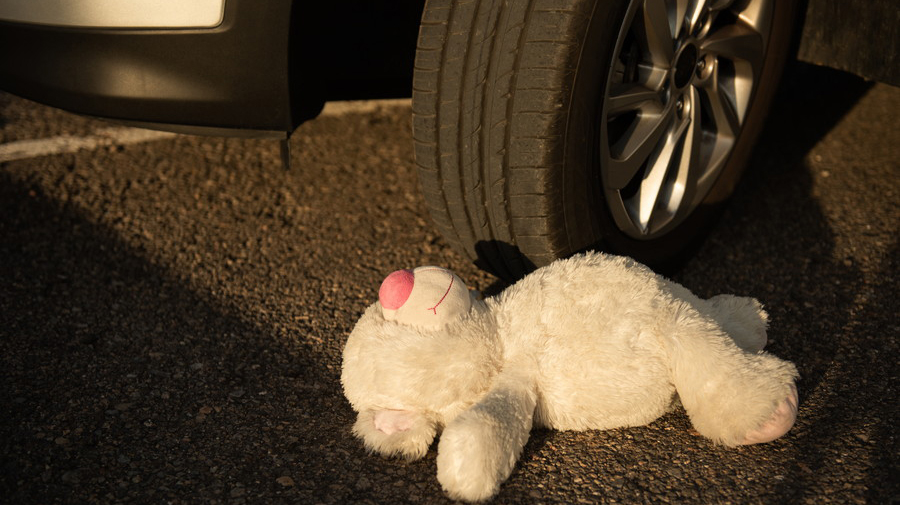 動物との衝突事故は物損事故扱いとなる。