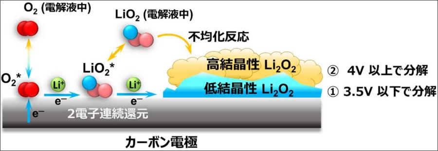 リチウム空気電池の放電過程(過酸化リチウムの生成)の模式図。NIMSプレスリリース(2020年8月12日)より。