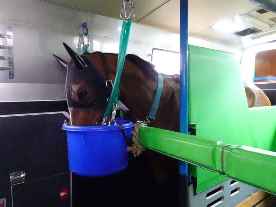 馬運車|くるくら