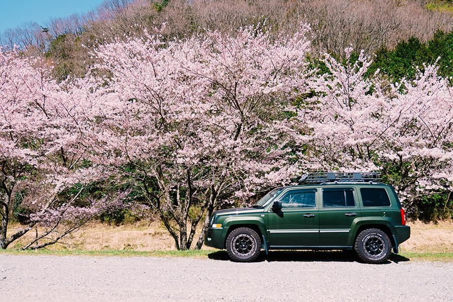 【JAF Mate 4月号連動企画】今月の特集は「車内で楽しく過ごす」がテーマ!