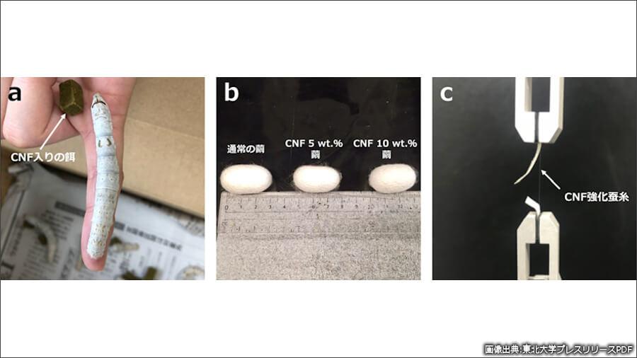 CNFを混ぜたエサをカイコに食べさせて(a)、作られたマユ(b)からCNF入り複合絹糸が採取された。そして、引張試験が行われた(c)。画像出典:東北大プレスリリースPDF