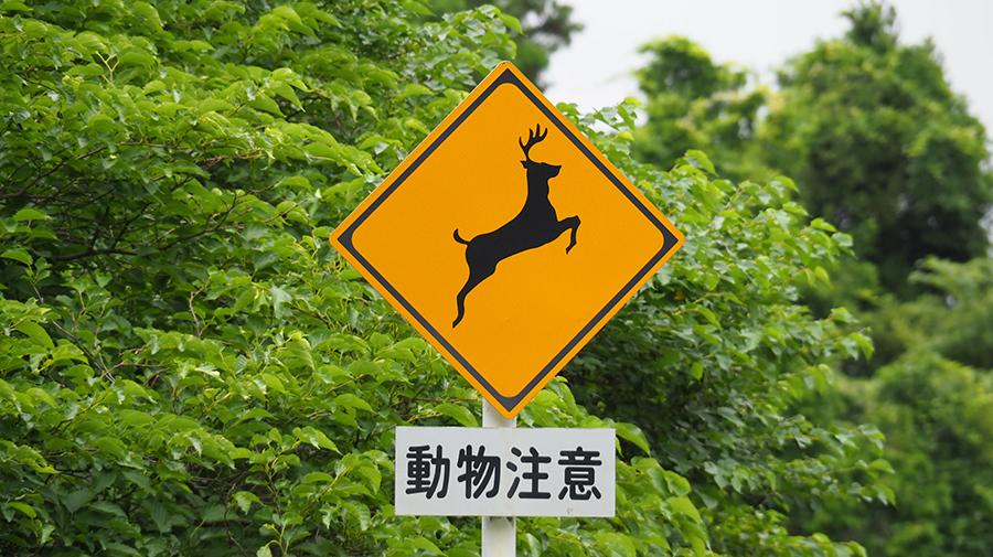 動物警戒標識