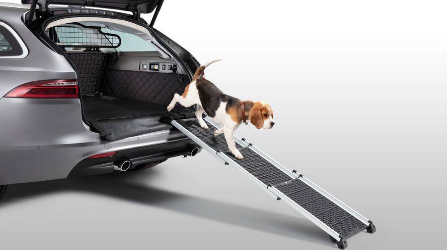 ペットアクセスランプは、耐荷重85kg、最適な寸法と角度に設計されたスロープだ。